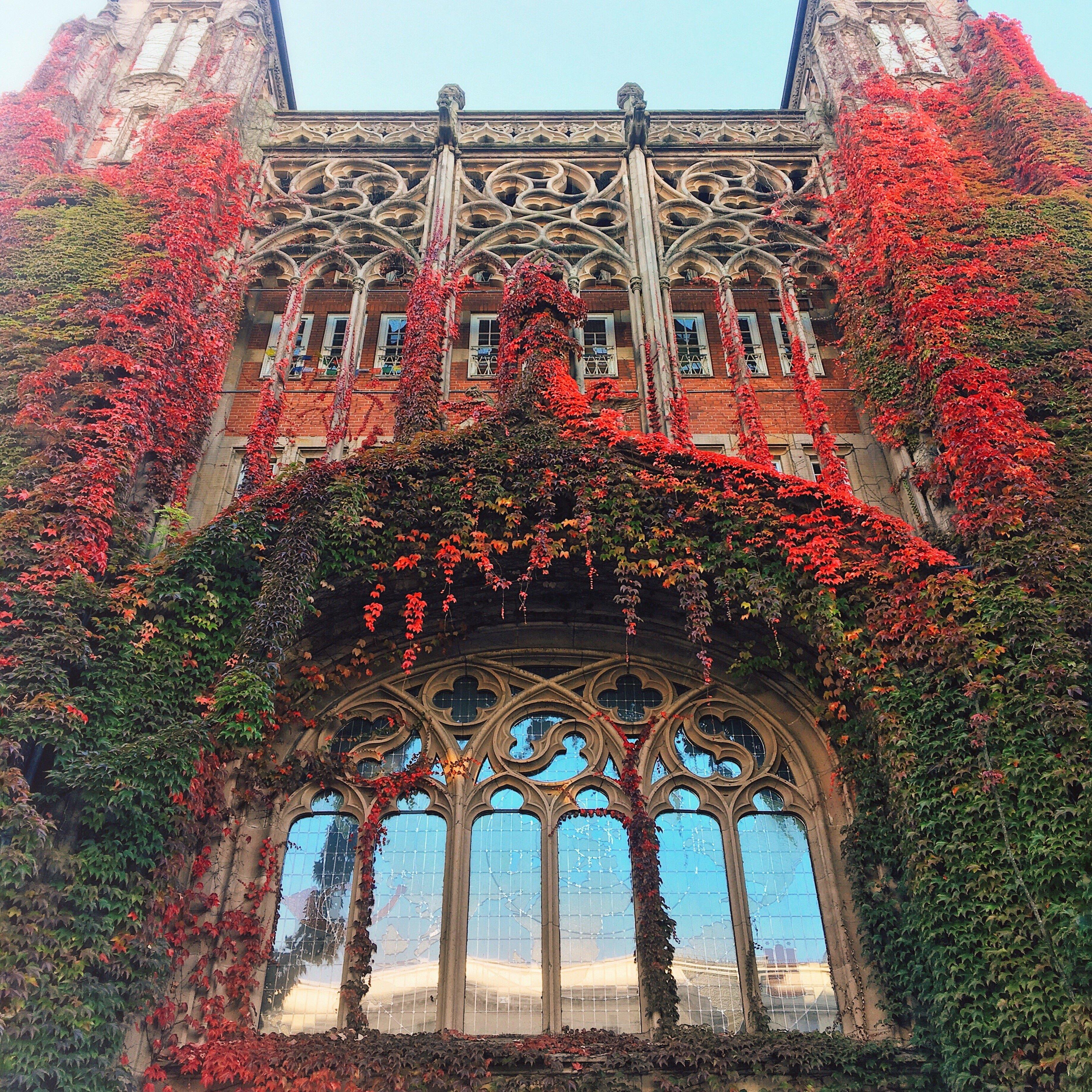 Instagram Hotspots in Hamburg: das Fenster des Postamts in der Schlüterstraße