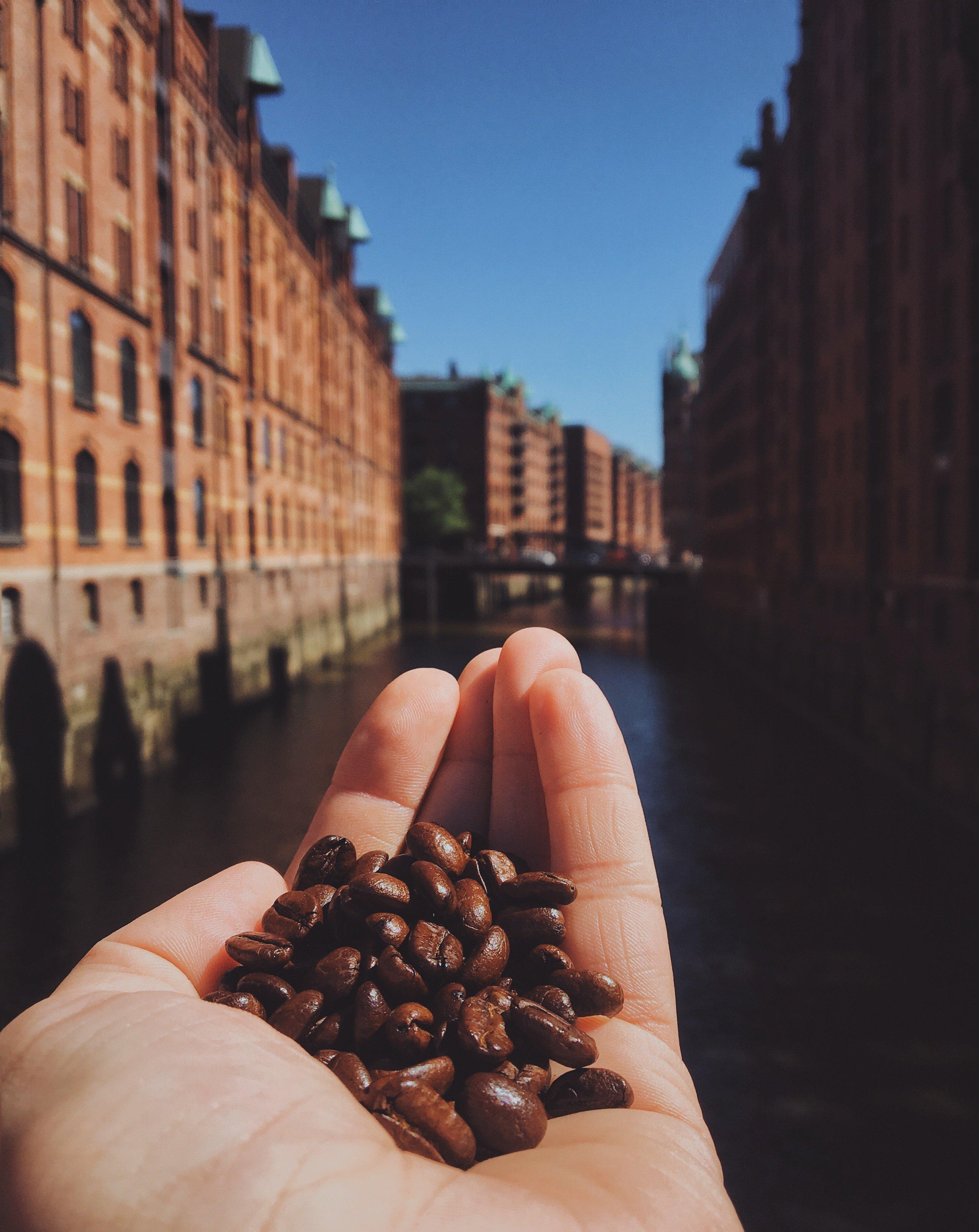 Local Food aus Hamburg: Kaffee Speicherstadt