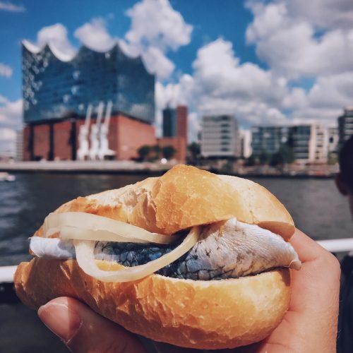 Local Food Hamburg: Fischbrötchen Elbphilharmonie