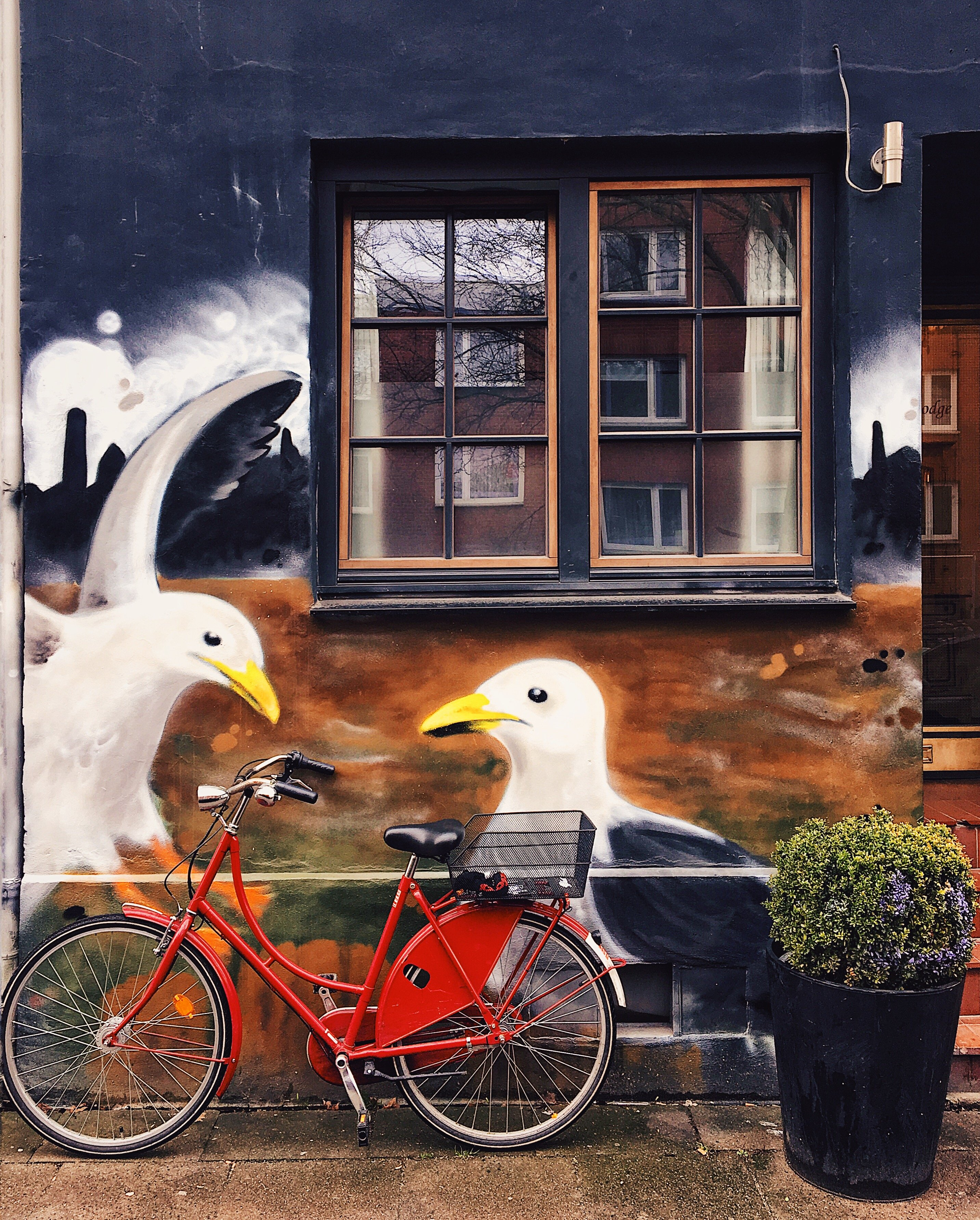 Streetart Hamburg: Graffiti Möwen an der Wand St. Pauli Frau Elbville Hamburg Companion