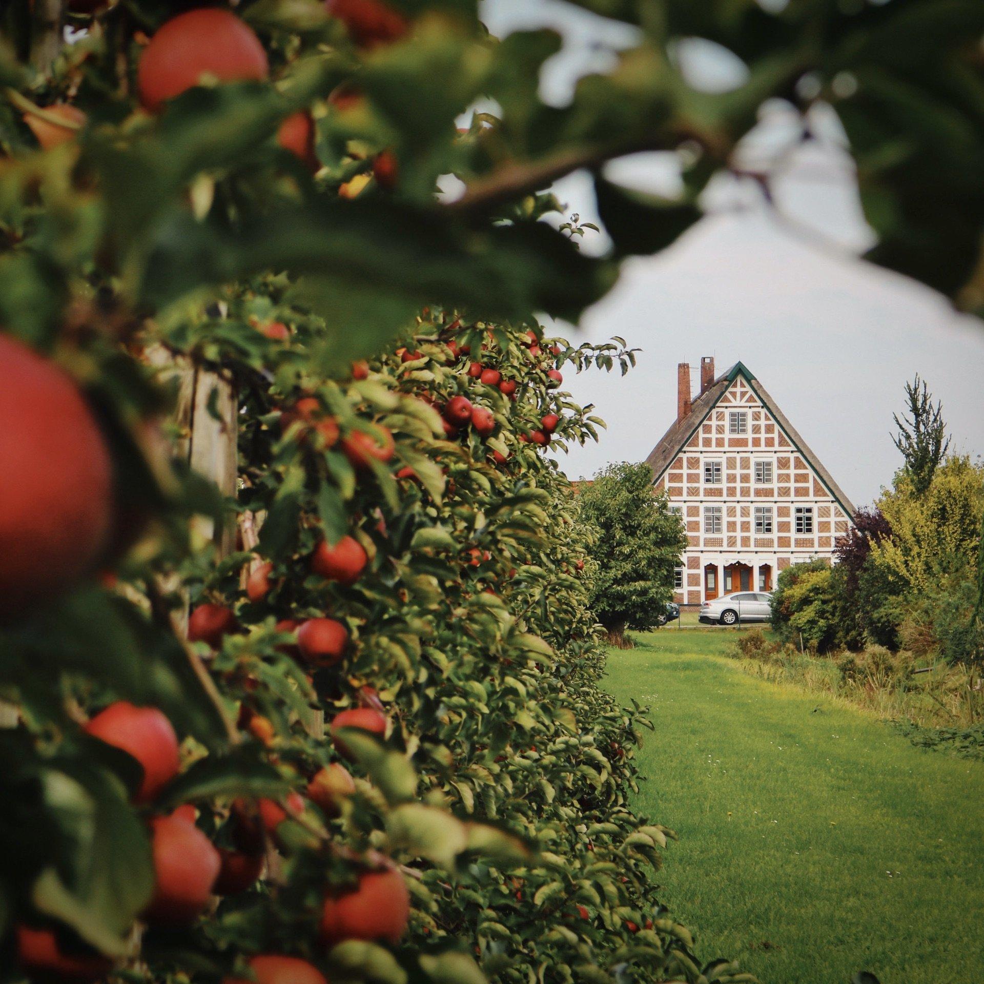 Tipps Für Das Alte Land Vor Den Toren Hamburgs: Von Brauttüren, Apfelbaumpaten Und Prunkpforten