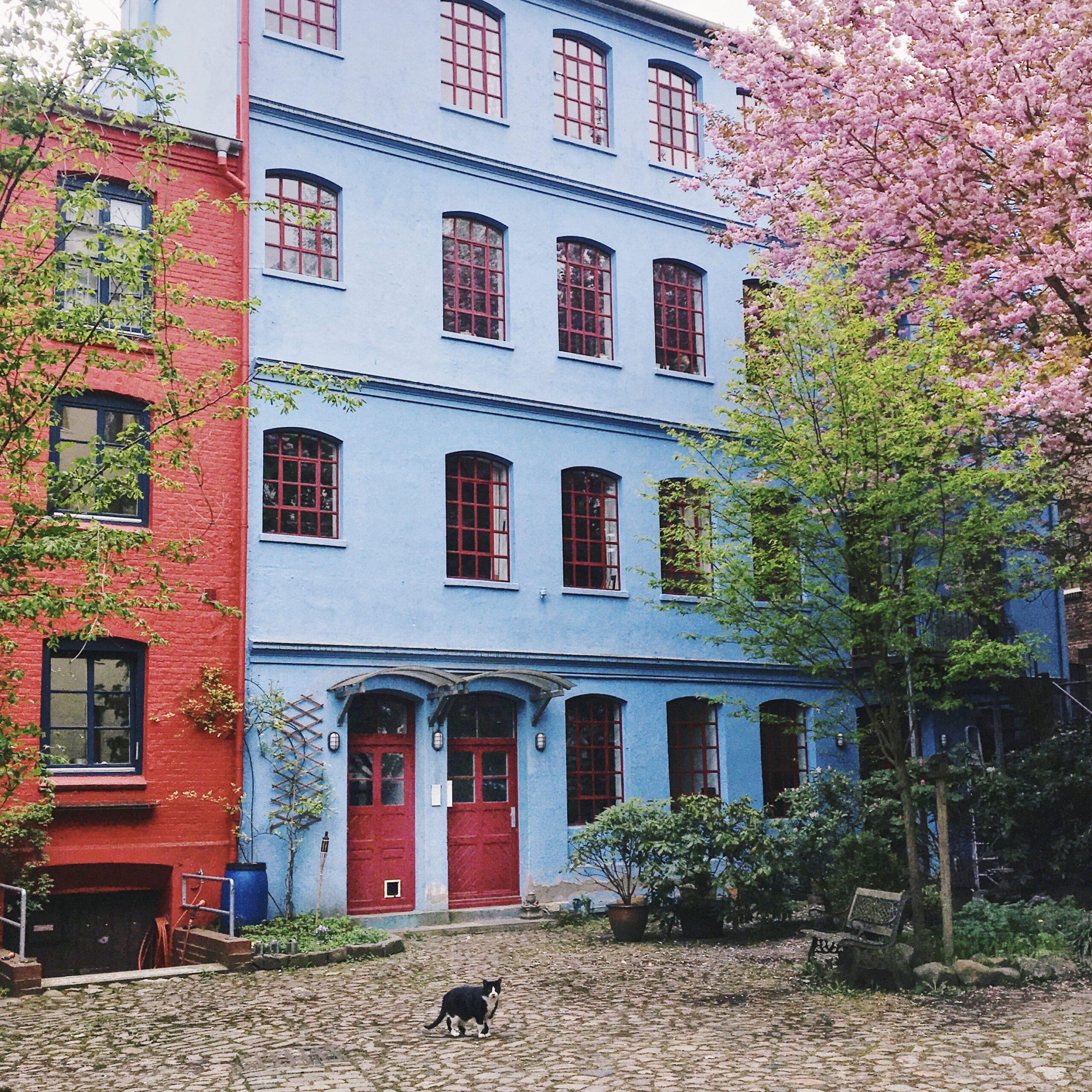 Hinterhöfe In Hamburg: Ottensens Bunte Magie In Der Ottenser Hauptstraße