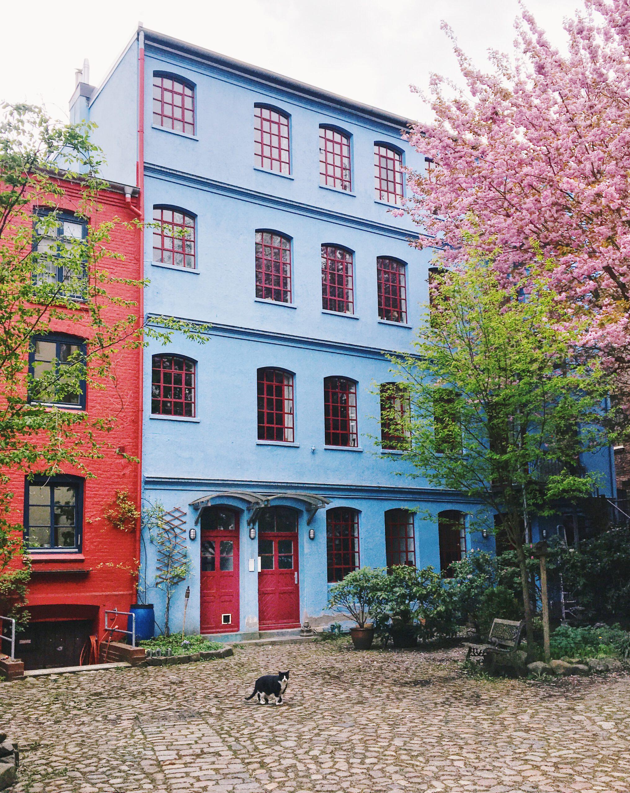 Hinterhöfe in Hamburg: Ottensen